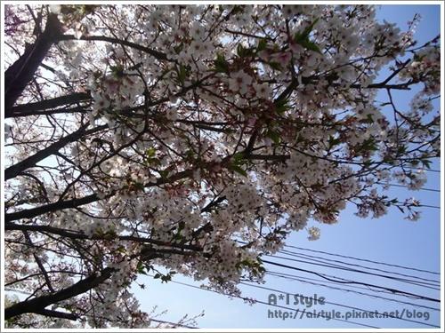 2011-04-18_233150.jpg