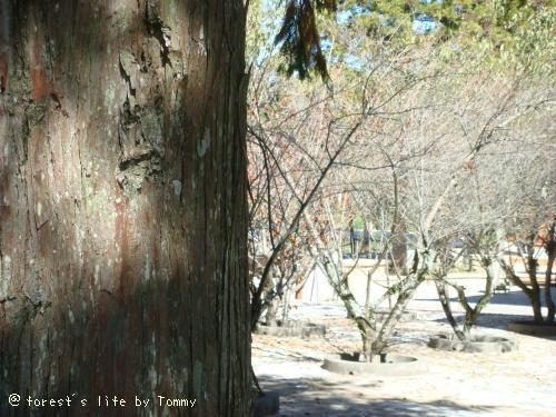 200911-01092.JPG