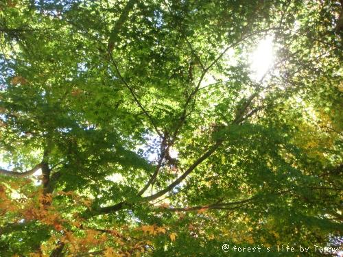 200911-01098.JPG