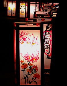 touro_09.jpg
