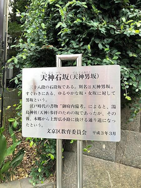 yujima8.jpg