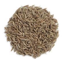 cumin seed.jpg