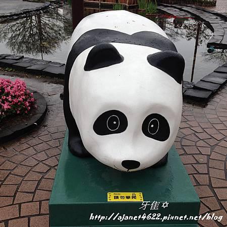 【PANDAS】壯觀1600貓熊世界之旅