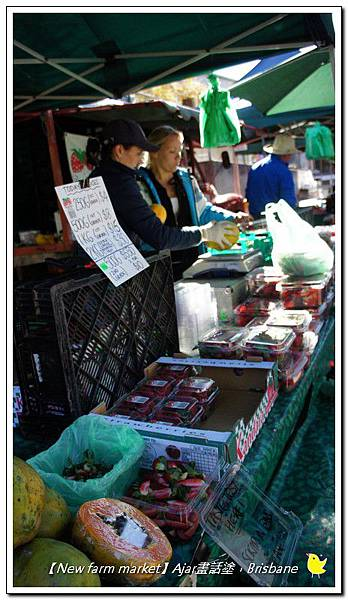 【New farm market】019.jpg