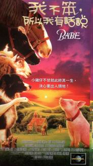 "BABE""寶貝小豬麥"""