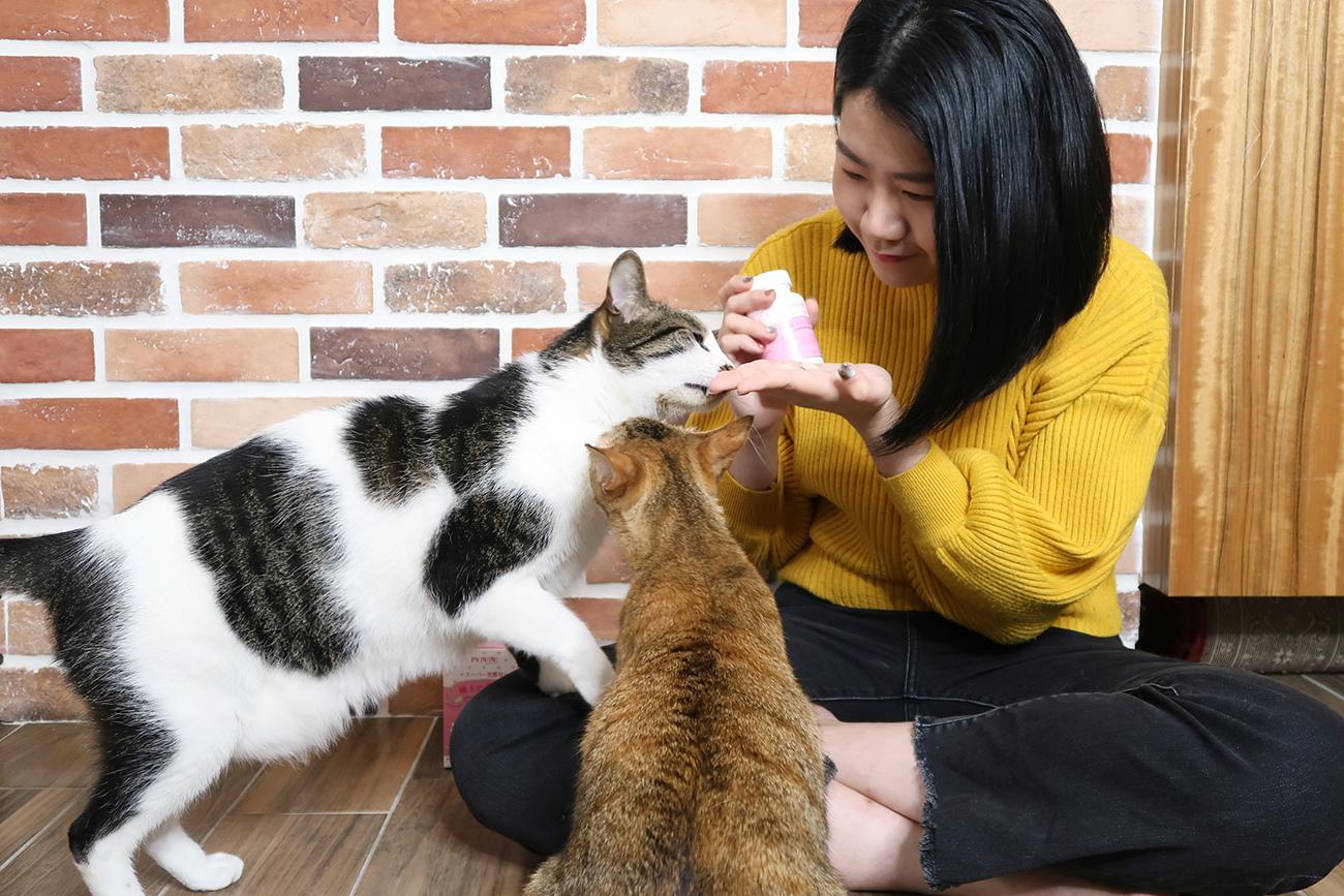 PS BUBU DOG %26;amp; CAT 超級黑酵母-極上的38種-寵物保健食品 (4).JPG