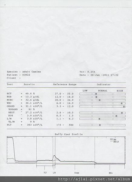 照片199-1.jpg