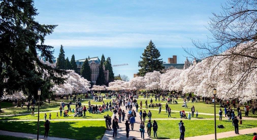 出國留學準備4階段,申請夢想美國大學沒那麼難 - 申請大學|美國大學|出國留學|百大名校|國際學校|XL ACADEMY|英文教學