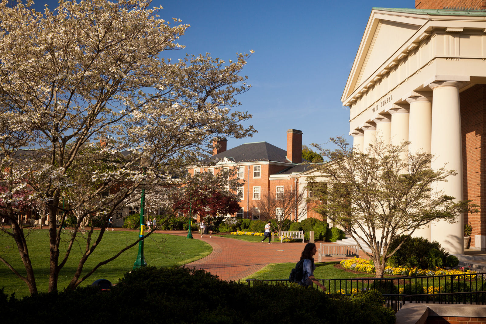 WFU維克森林大學 - 美國南方的貴族學校,實施小班制的精英教學