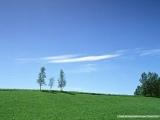 美麗風景-5.jpg