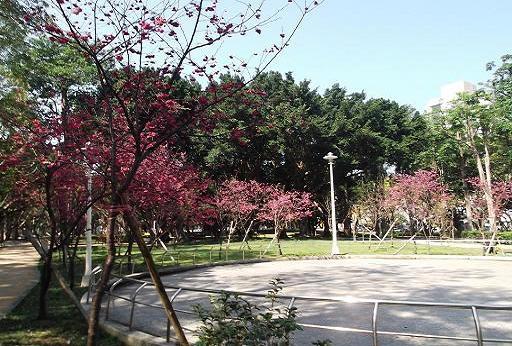 前港公園 005