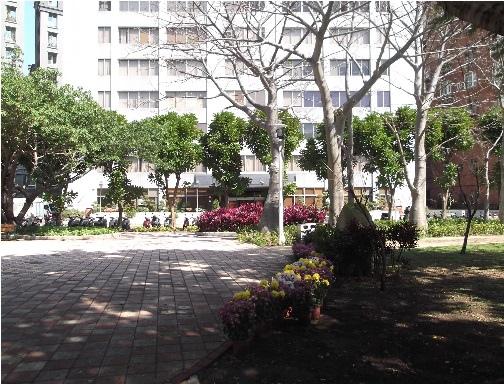 前港公園櫻花 08