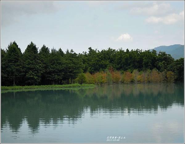 2011-10-雲山水的落羽松5.jpg