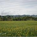 2011-11-社區巡禮2.jpg