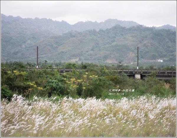 2011-11-社區巡禮15.jpg
