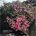 2012-02-林田山7