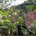 2012-02-林田山22