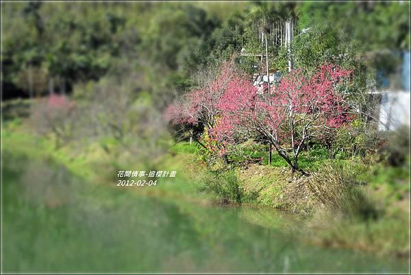 2012-02-追櫻計畫3