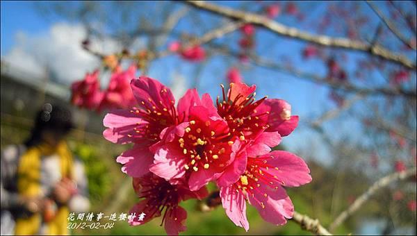 2012-02-追櫻計畫8