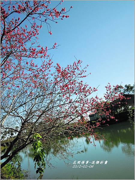 2012-02-追櫻計畫23