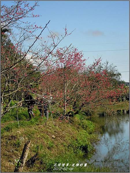 2012-02-追櫻計畫25