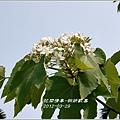 2012-03-桐妍歡喜3