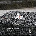 2012-03-桐妍歡喜9