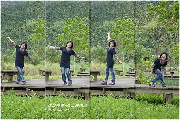 2012-03-馬太鞍濕地19