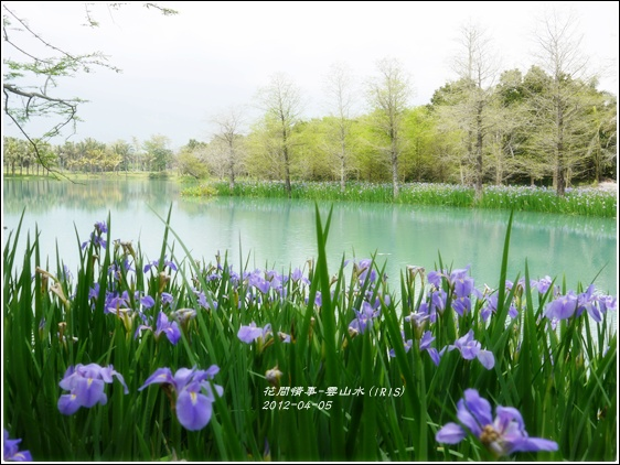 2012-04-雲山水14