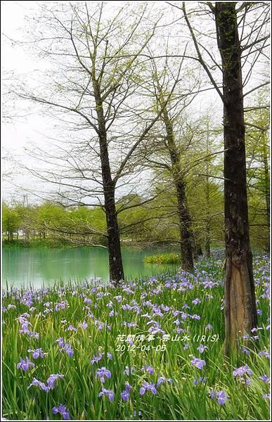 2012-04-雲山水17