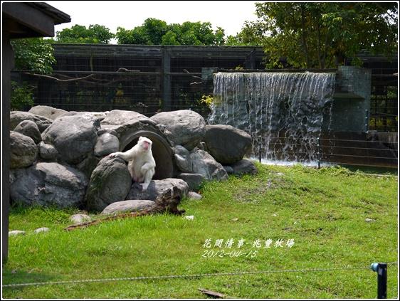 2012-04-兆豐牧場11
