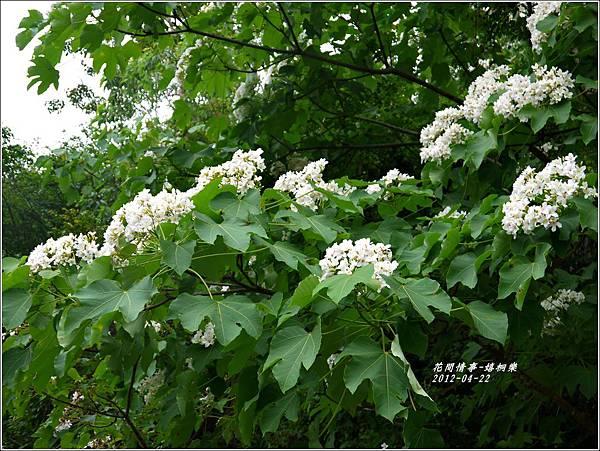 2012-04-嬉桐樂36