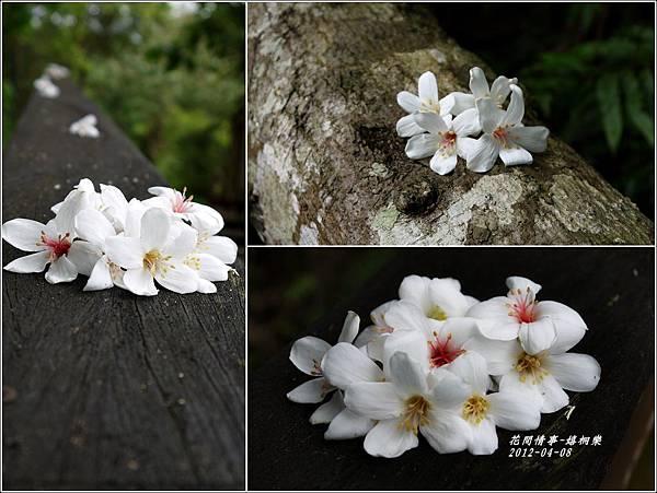 2012-04-嬉桐樂4