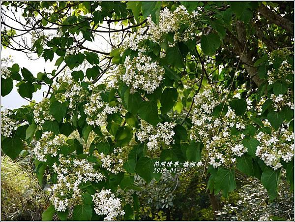 2012-04-嬉桐樂14