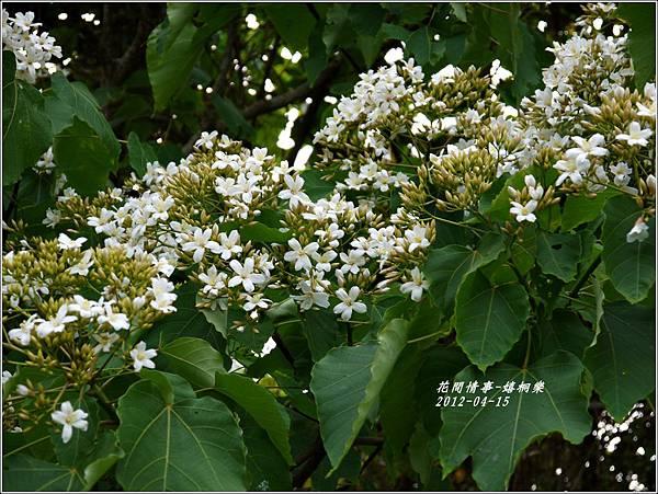 2012-04-嬉桐樂19