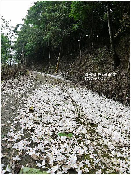 2012-04-嬉桐樂24