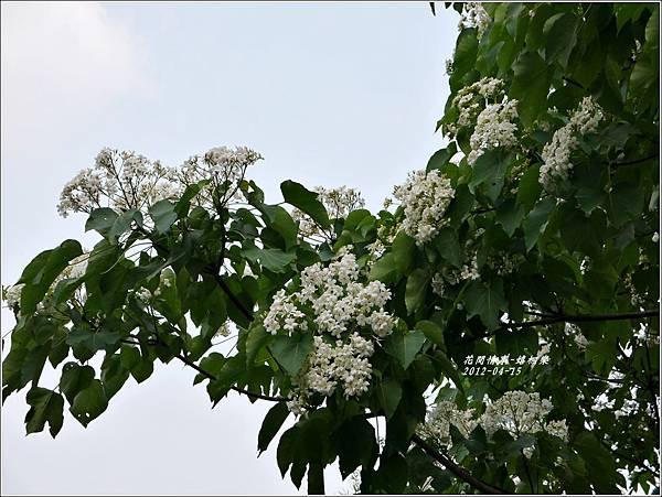2012-04-嬉桐樂37