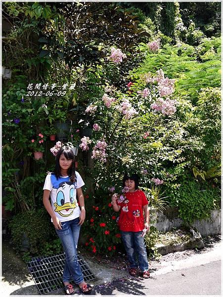 2012-06-紫薇13