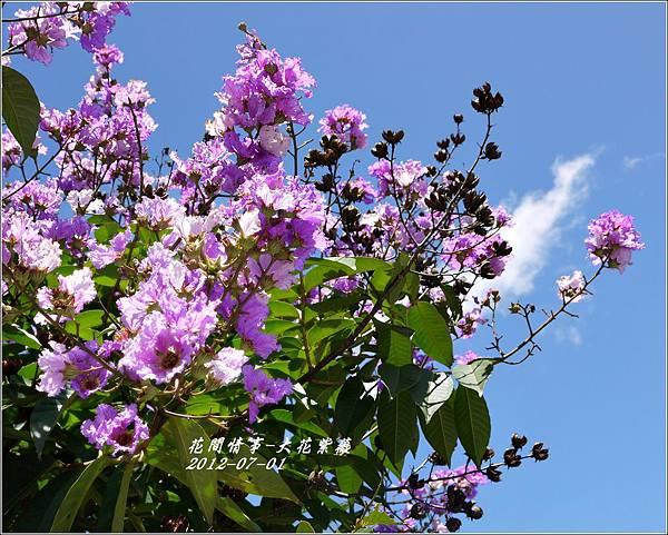 2012-07-大花紫薇2
