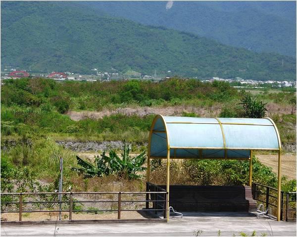 2012-07-大花紫薇10