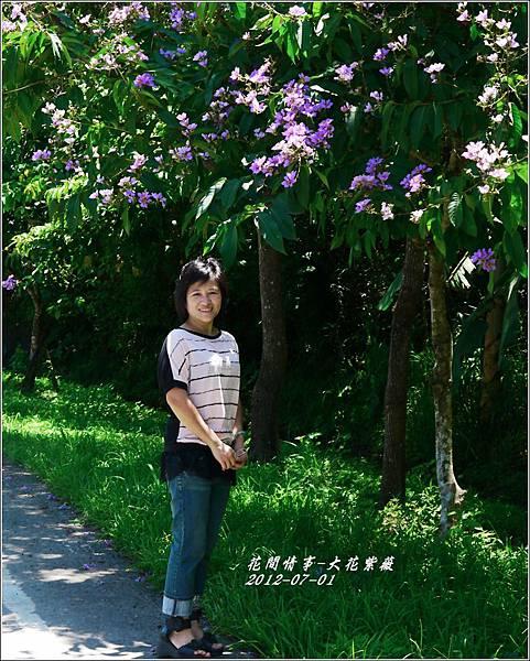 2012-07-大花紫薇25