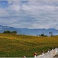 2012-08-六十石山25