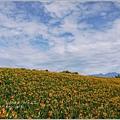 2012-08-六十石山26