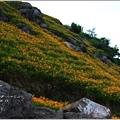 2012-08-六十石山35