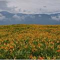 2012-08-六十石山48