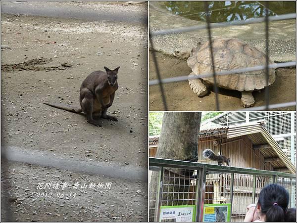 2012-08-高雄壽山動物園8