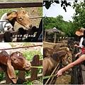 2012-08-高雄壽山動物園9