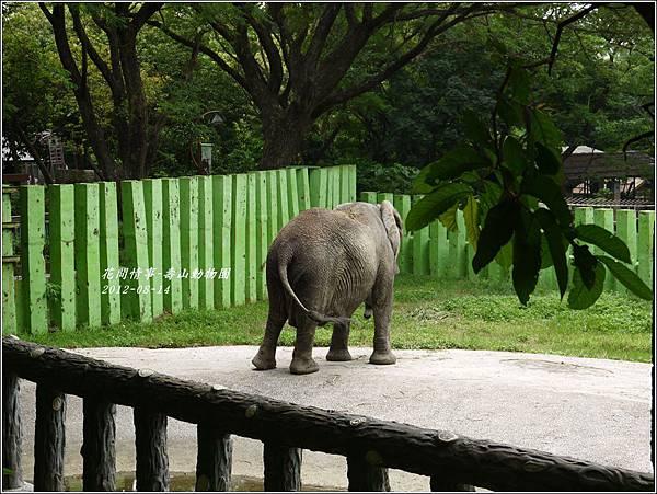 2012-08-高雄壽山動物園17