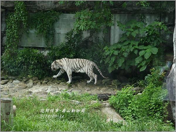 2012-08-高雄壽山動物園22