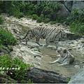 2012-08-高雄壽山動物園27